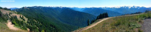 Hurricane Ridge Road vista