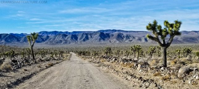 There are several flat and wide sections of Saline Valley Road, but beware of the soft berms!
